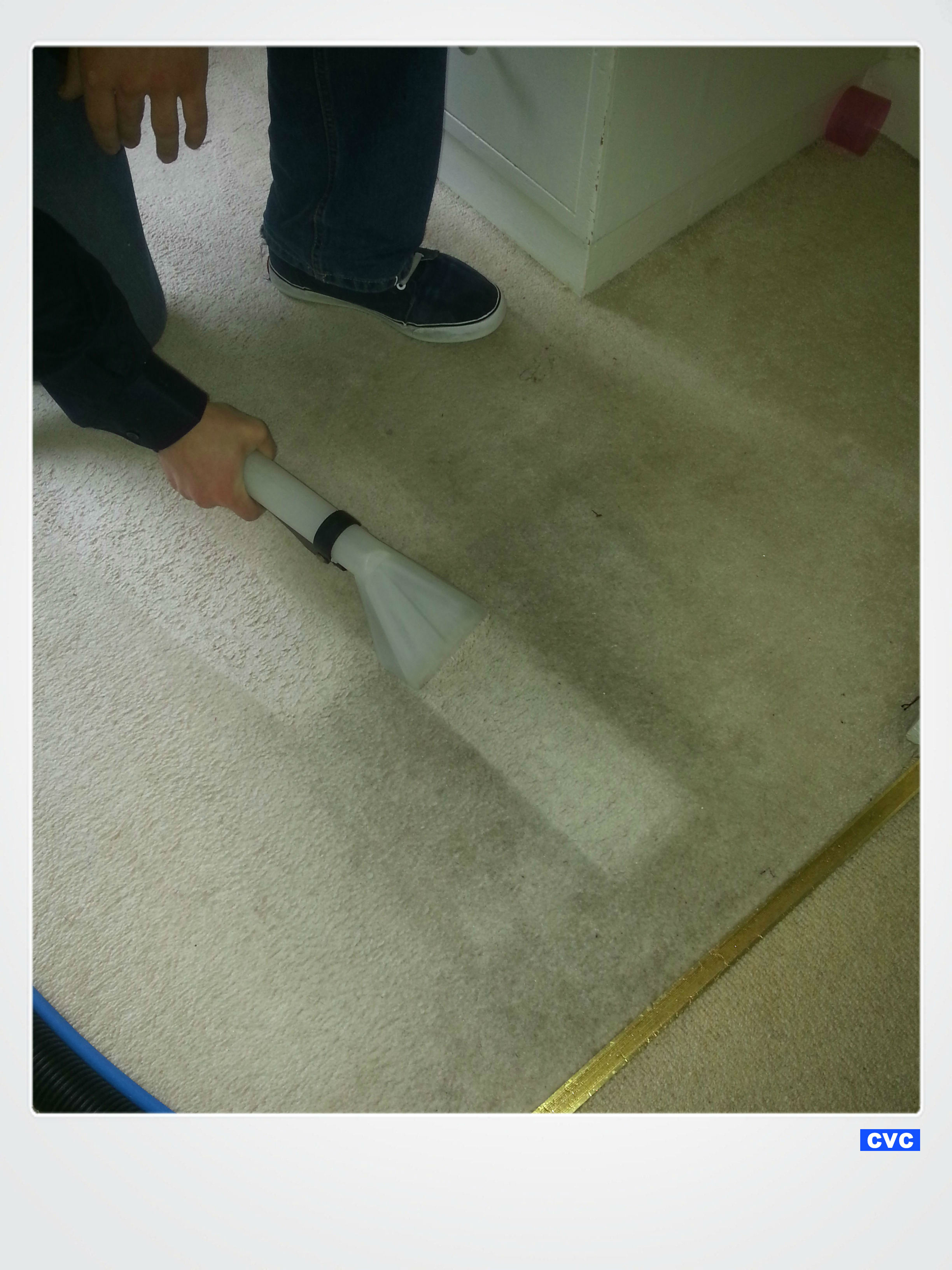 Loughborough Carpet Cleaners